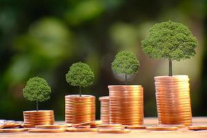 små träd på högar med mynt foto