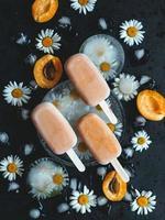 hemlagad glass på en pinne med aprikoser och yoghurt. hälsosam kost koncept foto