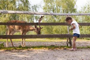 ung familj tillbringar kvalitetstid tillsammans rådjur utfodring i den vilda parken foto