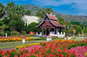 blomsterträdgård kunglig park ratchaphruek Chiang Mai Thailand foto