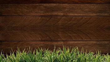 nytt vårgrönt gräs och bladväxt över trästaketbakgrund. trä bakgrund gräs ram foto