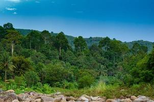 skog khiriwong landskap av liten flod och vacker solnedgång keeree wong ban khiri wong by nakhon si thammarat thailand foto