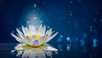 lotus vit ljus lila flytande ljus gnistrande bakgrund foto