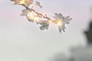 en gren av ett dekorativt träd med en krans i parken. juldekorationer i parken foto