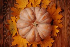 höstkomposition med pumpa och fallna löv. foto