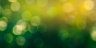 grön bakgrund för bokeh-suddighet foto