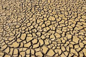 mark torka sprickor textur bakgrund för design. foto