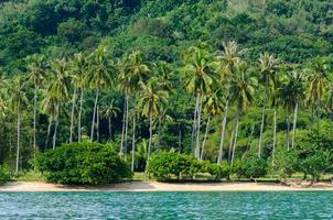 kokosnötstrand har ett berg andaman havet thailand krabi foto