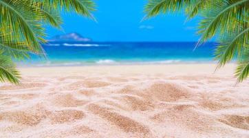 sommarsemester vit sandstrand med plats för text kokoslöv bakre ram havsutsikt energiskt golv foto