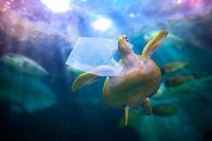 plast havssköldpaddan äter plastpåsar under det blå havet. miljöskyddskoncept och inte kasta skräp i havet foto