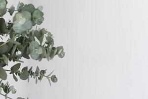 stilleben arrangemang blommor med grön växt foto