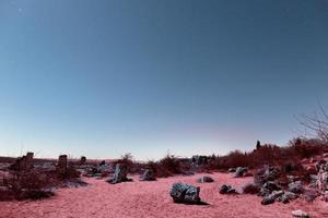 det estetiska retro vaporwave-landskapet foto