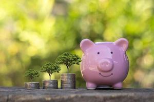 tillägget av mynt och växter växer på staplade mynt, idéer om investeringsvinster och utdelning av sparande. foto