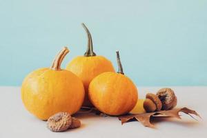 minipumpor med gula fallna blad, mot kricka bakgrund höstbakgrund med kopieringsutrymme foto