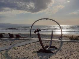 häst på stranden av Ayia Eirini i Cypern foto