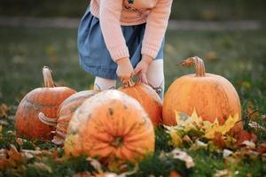 beskuret foto av en liten flicka som försöker lyfta en pumpa