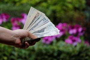 hand av en kvinna som håller sedlar i amerikanska dollar i en trädgård foto