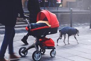 far med röd barnvagn som går längs en gata med fru och hund foto