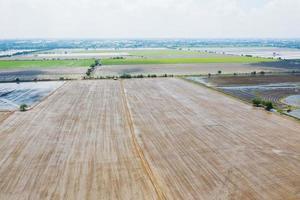 Flygfoto från flygande drönare av fältris med bakgrundslandskap grönt mönster, ovanifrån fältris foto