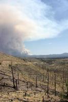bevis på gammal skogsbrand i gila nf med böljande rök från nuvarande Johnson-brand i bakgrunden foto
