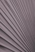 silver, kopparfärgat palmbladmönster. fan palmblad med dämpad grågrön abstrakt texturbakgrund. bismarckia nobilis-sorten. vertikal bildstil. foto
