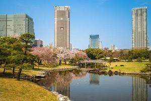 hama rikyu trädgård i tokyo, japan foto