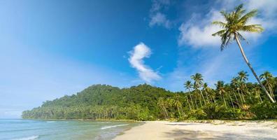 vacker tropisk strand och hav med kokospalmer under blå himmel foto