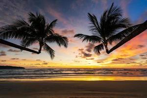 vacker tropisk strand och hav med silhuetten av kokospalmen vid solnedgången foto