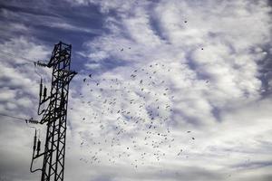 högspänningstorn med himmel foto