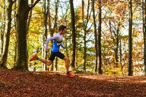 springer i höstskogen bland de torra bladen foto