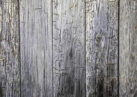 träplankor bakgrund foto