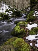 flod i frusen skog foto