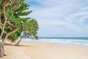 tom tropisk sommarstrandbakgrund foto