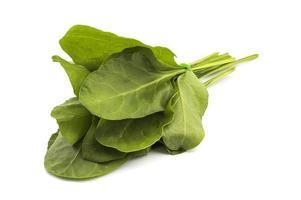 närbild av färsk grön spenat isolerad på vit bakgrund foto