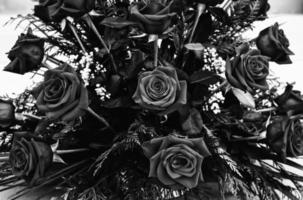 centrum brudgummen rosor foto