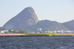 Rio de Janeiro centrum foto