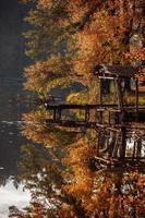 gammal träbro på sjön på hösten. träbro på sjön. löv som flyter i vattnet, höst, timmerbro, plattform för fiskare foto