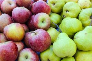 rött äpple och grönt päron foto