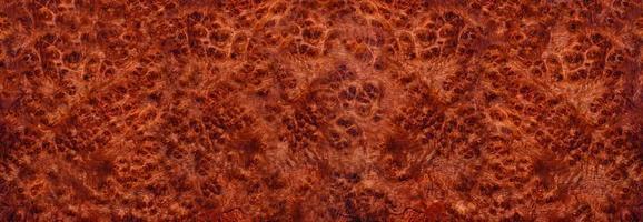 amboyna burl trä randigt exotiskt trä foto