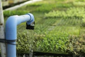 hydroponic system flöde vatten och gödsel automatisering för gröna ek grönsaksträdgård foto