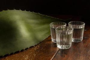 det läckra sortimentet av mezcal alkoholhaltiga drycker foto