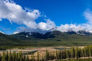 utsikt över klipporna från bågdalen parkway. Banff National Park, Alberta, Kanada foto