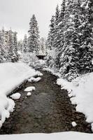 Louise Creek strömmar från Lake Louise. Banff National Park, Alberta, Kanada foto