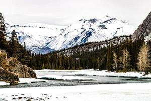 bågfloden från fallen på vintern. Banff National Park, Alberta, Kanada foto
