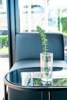 växt i vasdekoration på bordet i vardagsrummet foto