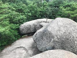 stora stenar i parken i sokcho city, Sydkorea foto