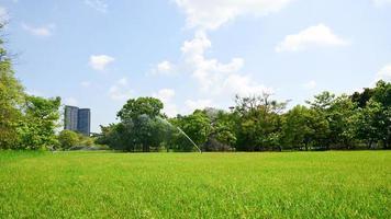 vacker park och gröna trädväxter i offentlig park med grönt gräsfält. foto