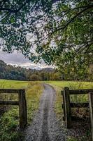 natursköna vyer längs virginia creeper trail foto