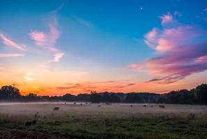 vacker drömmande soluppgång på gården mark i landet foto