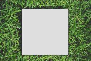 papper kort vit mall mockup tomt kopia utrymme på ett grönt gräs foto